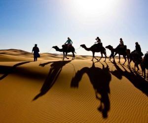 Erg Chegaga Camel Trekking